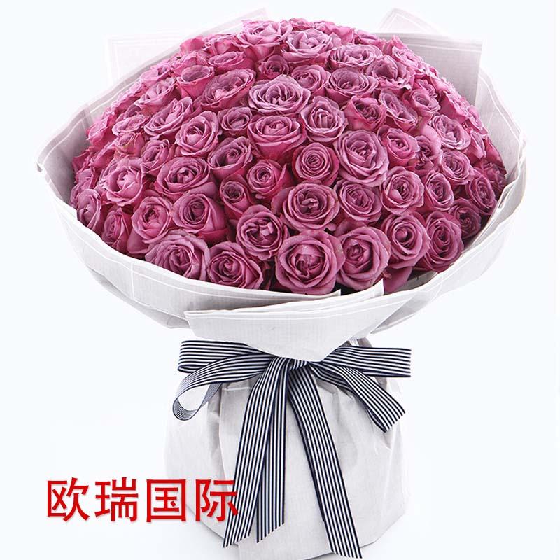 99支紫玫瑰花束 泰国 新加坡 马来西亚 印尼 越南 菲律宾 老挝 柬埔寨 印度 巴基斯坦