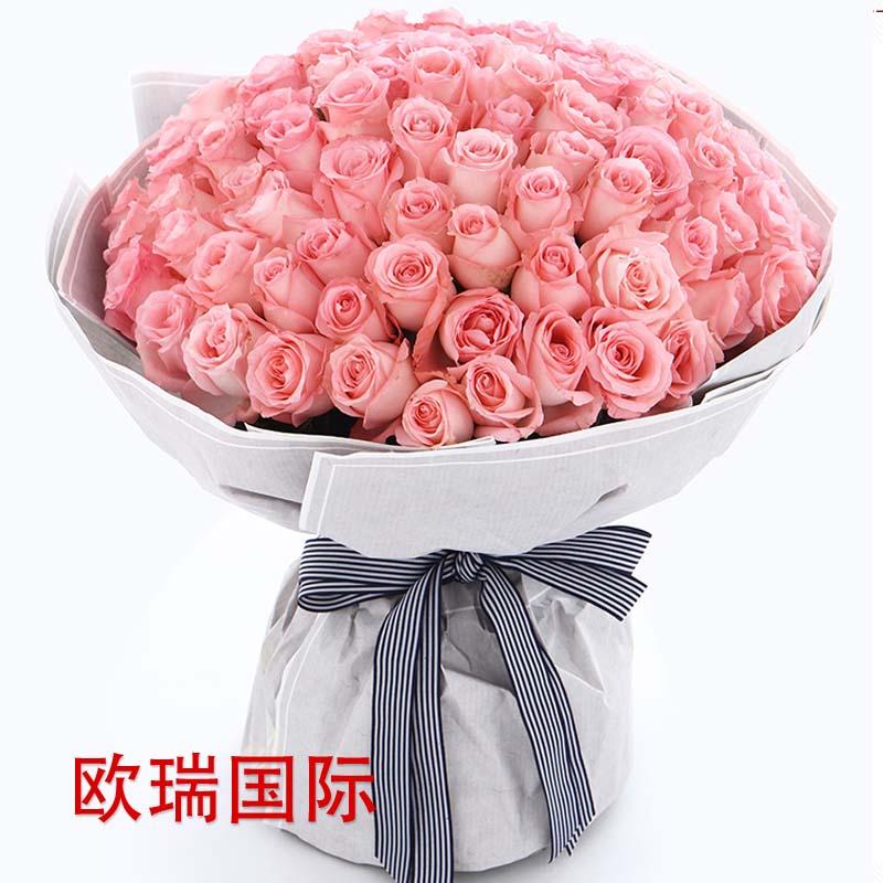 99支粉玫瑰花束 泰国 马来西亚 新加坡 印尼 菲律宾  印度 巴基斯坦